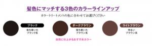 Bảng màu Nhuộm tóc tạm thời Nhật DHC Quick Retouch Hair Color