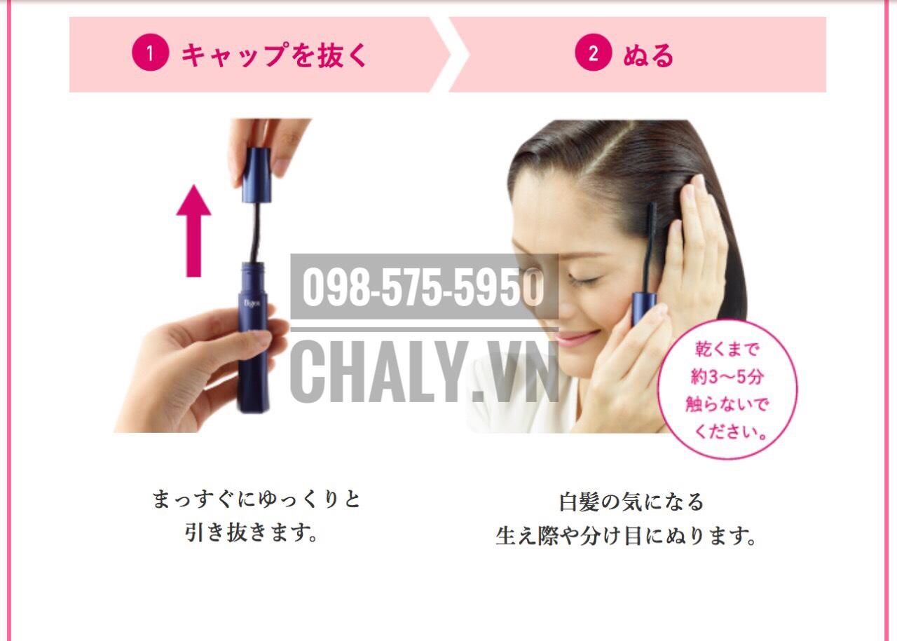 Cách thức dùng thuốc nhuộm tóc tạm thời Nhật Bản Bigen Hoyu