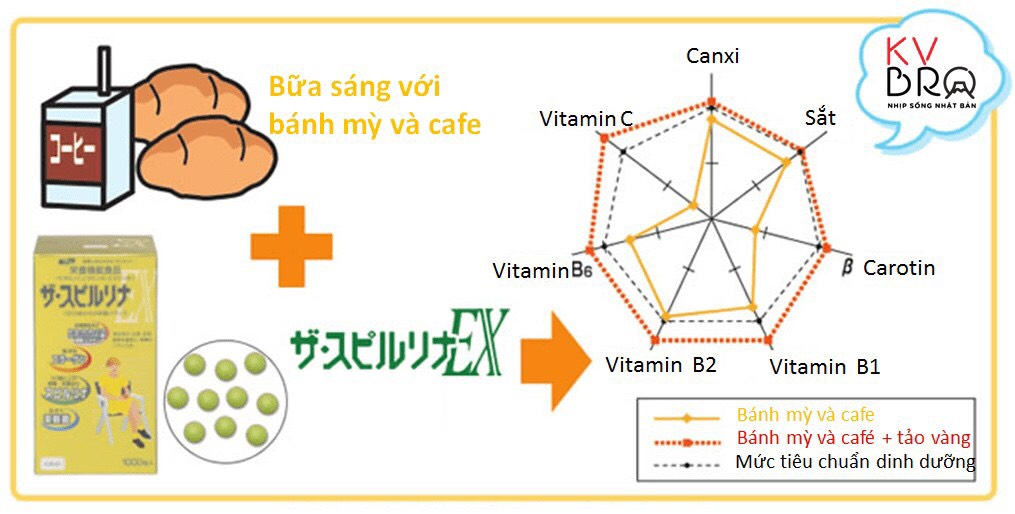 Nguồn dinh dưỡng cung cấp cho cơ thể khi ăn sáng cùng và không cùng tảo vàng spirulina Nhật Bản