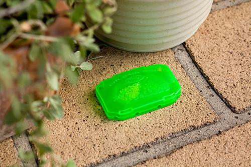 Có thể đặt thuốc diệt kiến của Nhật ở bất cứ đâu trong nhà rất tiện lợi