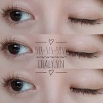 Mascara Dolly Wink Brown Long and Volume Water Proof 01