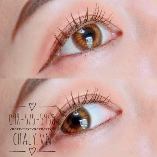 Tone màu nâu đặc trưng giúp chị em có đôi mắt dịu ngọt, trẻ trung, không sắc lẹm