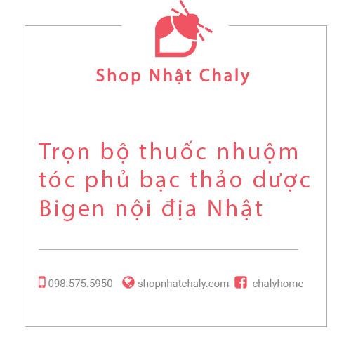 Tron bo thuoc nhuom toc phu bac Bigen noi dai Nhat 01